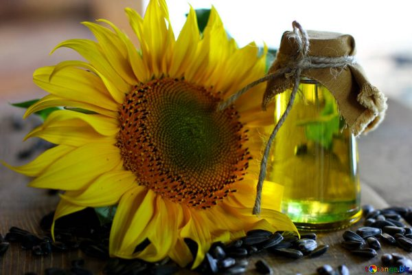 sunflower oil refined 32721